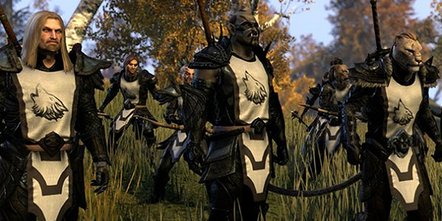 elderscrolls online group with tabard